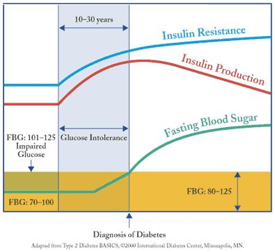 Insulin Diagram